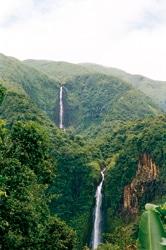 2 cascades-7981 ret._19a